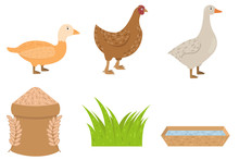 Duck, Goose, Chicken Icons In Flat Style, Food For Poultry Vector Illustration