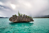 Crystal Rock in the turquoise waters of the Indian Ocean at Le Morne, Mauritius - Africa - 266815998