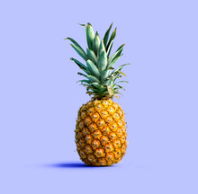 One Pineapple On A Solid Color...