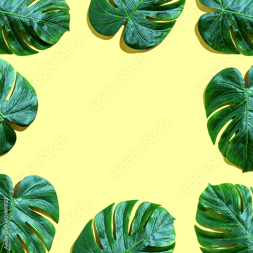 Printed kitchen splashbacks Amsterdam Tropical plant Monstera leaves overhead view flat lay