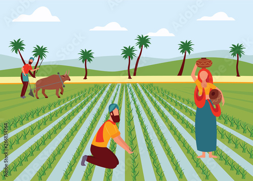 Obraz na plátně Indian male and female farmers working in paddy field flat cartoon style