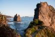 hiking trail overlooking pacific ocean coastline with haystack rocks in water