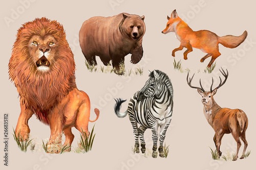 Photo  Hand drawn wild animals