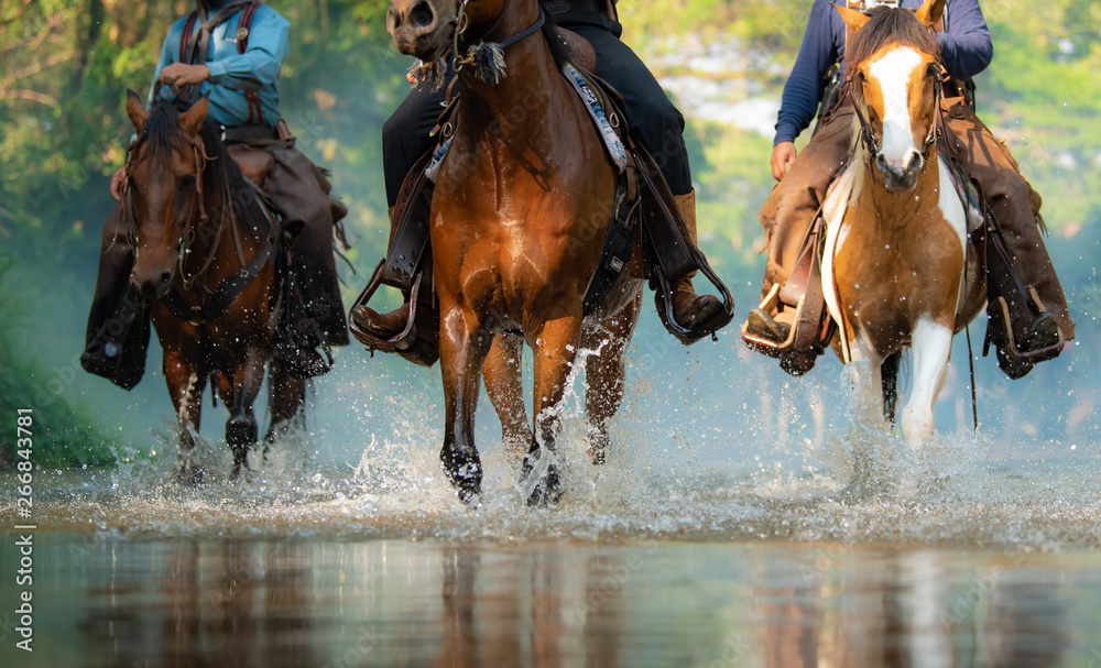 Fototapety, obrazy: The close-up view cowboy  of galloping horse on the river