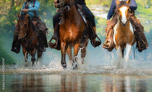Foto auf Leinwand Pferde The close-up view cowboy of galloping horse on the river