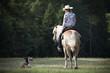 Ein Cowgirl reitet mit ihrem Haflinger und einem Husky durch den Wald