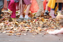 Fall, Autumn, School, Harvest,...