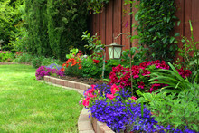 Landscaped Flowered Yard