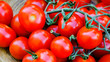 Leinwanddruck Bild - Trusses of tomatoes macro view. Fresh antioxidant rich cherry tomatoes bunch. Trinomial name for this vegetable is Solanum lycopersicum