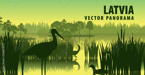Fotografía vector panorama of Latvia with black stork