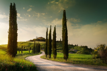 summer farmland and country road; tuscany countryside rolling hills