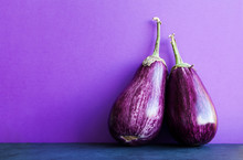 Two Ripe Purple Aubergine Eggplants On Violet Black Background. Organic Vegetables With Beautiful Striped Pattern. Copy Space