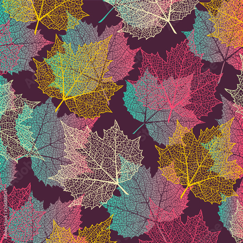 Fototapeta  Colorful  background with maple leaves