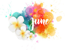 Hello June - Floral Summer Concept Background