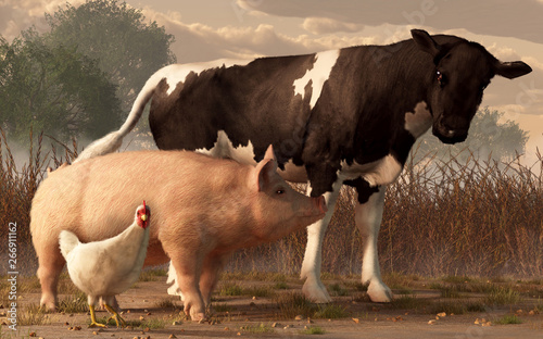 Fotografia, Obraz A brown and white cow, a pink pig, and a white chicken walk side by side in a barnyard