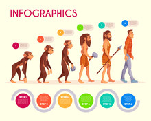 Human Evolution Infographics. ...