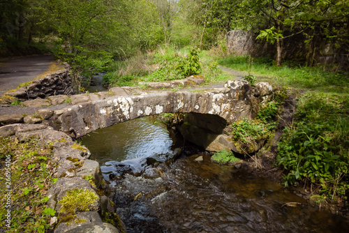 Fotografie, Obraz  Small ancient bridge in a Scottish glen with a little river running under