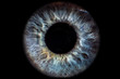 Leinwandbild Motiv Iris Auge blau vor schwarzem Hintergrund