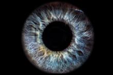 Iris Auge Blau Vor Schwarzem H...