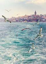 Citycape Of Istanbul With Galata Tower On Skyline And Flying Birds Over The Sea In The Golden Horn. Vertical Background For Billboard With Place For Text About Your Trip In Turkey.