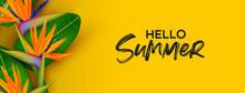Hello Summer Banner Of 3d Paradise Bird Flower