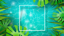 Summer Background Template Of Tropical Plants