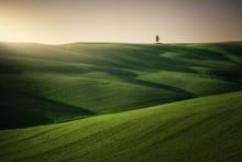 Panoramic View Of Beautiful En...