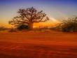 Leinwanddruck Bild - Silhouette of baobab