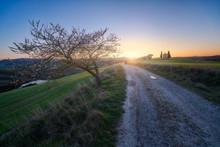 Empty Rural Road In Majestic Green Fields Of Italy