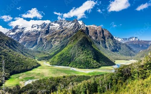 Türaufkleber Pistazie Nice view from amazing nature of New Zealand