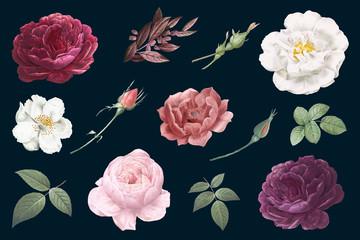 Vintage cvjetni crteži