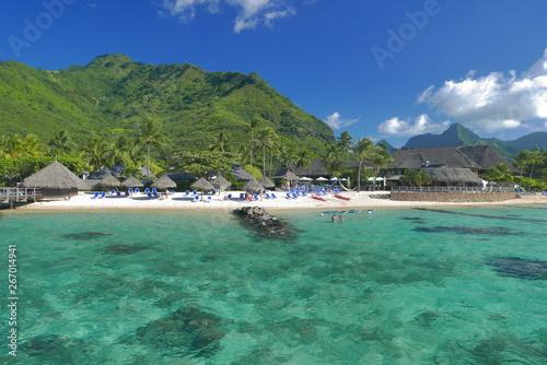 In de dag Pool lagon de moorea polynesie française