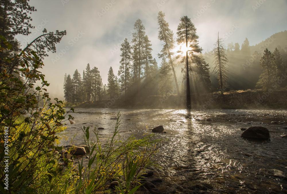 Fototapety, obrazy: South Fork Boise River Morning