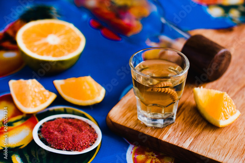 Fototapeta mezcal shot with chili salt and agave worm, mexican drink in mexico