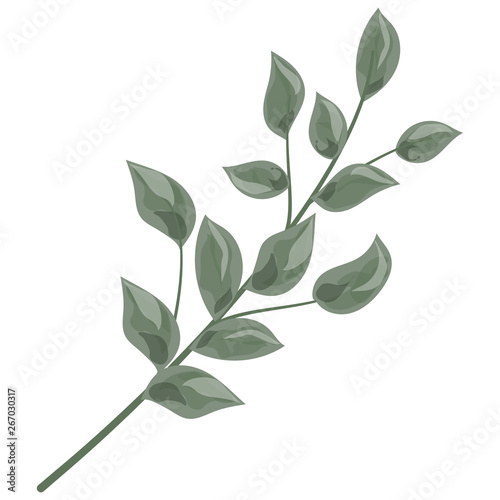 Fototapeta Art watercolor natural branches leaves elements. Vector illustration . obraz na płótnie