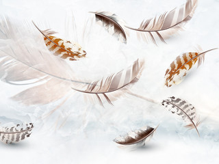 Panel Szklany 3D 3d illustration, light background, several gray and beige feathers