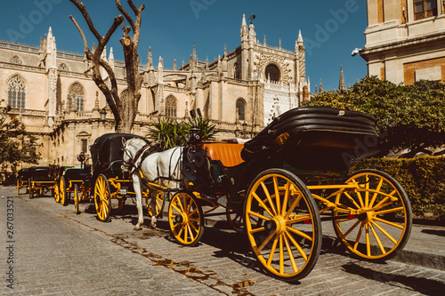 Fototapety, obrazy: Horse carriage in Seville, the Giralda cathedral in the background, Andalusia