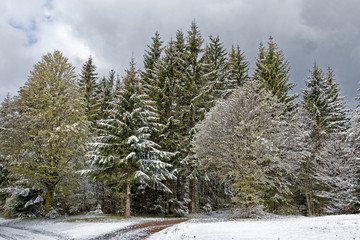 Fototapeta Inspiracje na zimę Retour de la neige au printemps