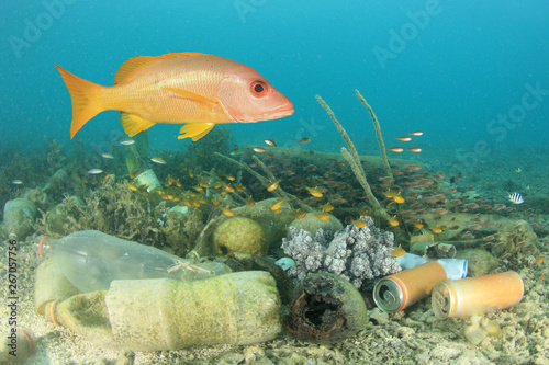 Tuinposter Londen Plastic pollution in ocean and fish