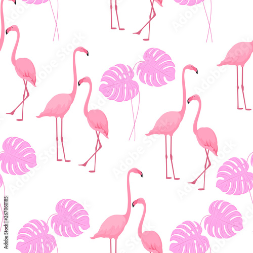 Ingelijste posters Flamingo vogel Graceful flamingos and monstera leaves. Tropical summer background