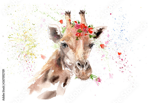 Photo  watercolor drawing of an animal - giraffe in flowers
