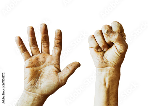 Valokuva  Workers dirty hands, open palm and clenched fist isolated on white background
