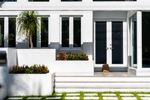 Luxury Modern Entrance Archite...