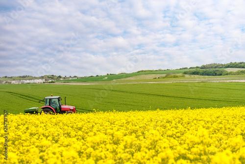 Papiers peints Jaune agriculteur fertilisant ses champs
