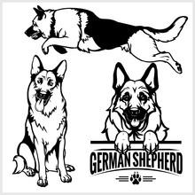 German Shepherd Dog - Vector Set Isolated Illustration On White Background
