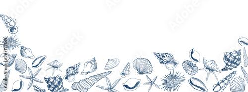 Fotografie, Obraz Vector seashell banner