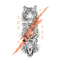 Lion Head. Typography Graphic Print, Fashion Drawing For T-shirts