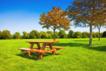 Picnic Table On A Green Meadow With Trees On Background - Concept Image With Pixelation Effect