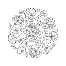 Round Bouquet With Outline Geranium Or Cranesbills Flower Bunch And Ornate Leaf In Black Isolated On White Background.