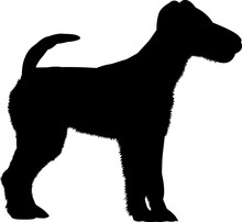 Fox Terrier 5 Isolated Vector Silhouette